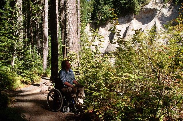 WheelchairPark